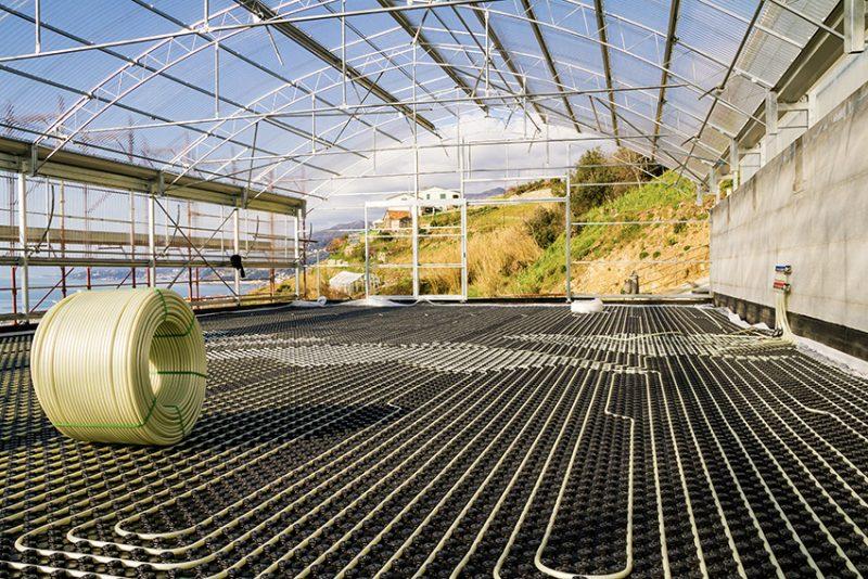 TECEfloor, la soluzione ideale per climatizzare le serre del basilico di Pra'